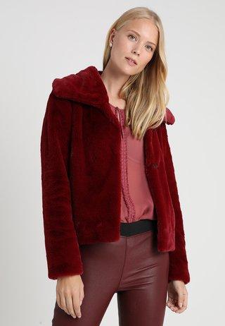 Winter jacket - red carpet