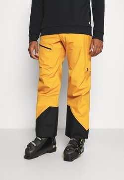 Peak Performance - VERTICAL 3L PANTS - Täckbyxor - blaze tundra