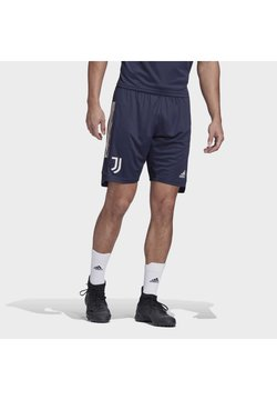adidas Performance - JUVE TR SHO - Sports shorts - legink/orbgry