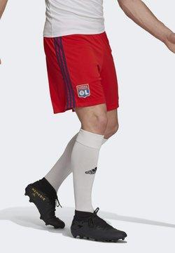adidas Performance - kurze Sporthose - red