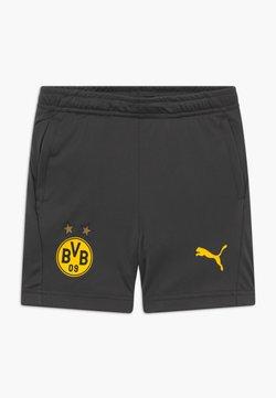 Puma - BVB BORUSSIA DORTMUND TRAINING SHORTS WITH POCKETS WITH ZIPPER - kurze Sporthose - asphalt/cyber yellow