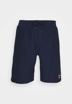 Polo Ralph Lauren Big & Tall - TRAINING - Jogginghose - cruise navy