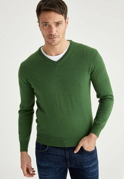 DeFacto - ITALIAN COLLECTION - Neule - green