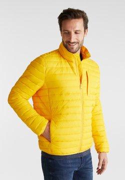 Esprit - RECTHINS  - Winterjacke - yellow
