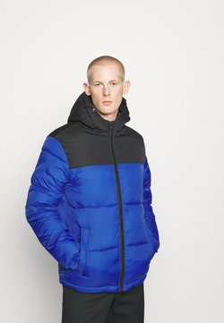 Jack & Jones - JJDREW  - Winterjacke - surf the web