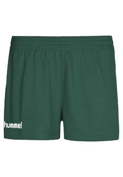 Hummel - CORE - Korte broeken - evergreen