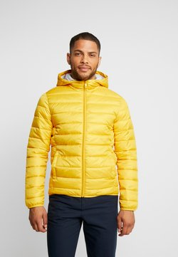 Q/S designed by - OUTERWEAR - Winterjacke - yellow