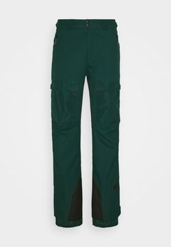 O'Neill - PANTS - Pantaloni da neve - panderosa pine