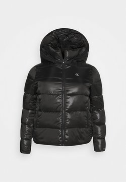 Calvin Klein Jeans Plus - SHINY SHORT PUFFER - Winterjacke - black