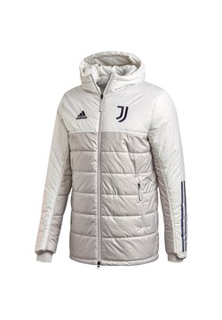 adidas Performance - Winterjacke - grey