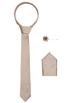 Burton Menswear London - WEDDING PLAIN WITH MATCHING FLOWER PIN SET - Krawatte - neutral