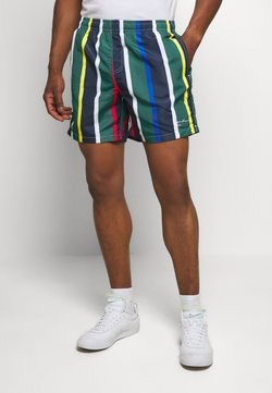 Karl Kani - SIGNATURE STRIPE - Shorts - navy