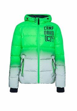Camp David - Winterjacke - green