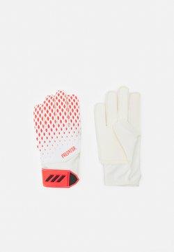adidas Performance - PREDATOR FOOTBALL KIDS GOALKEEPER GLOVES UNISEX - Torwarthandschuh - white/pop