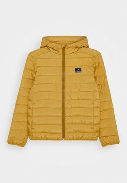 Quiksilver - SCALY YOUTH - Talvitakki - honey