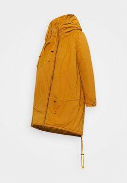 MAMALICIOUS - TIKKA CARRY ME PADDED JACKET - Abrigo de invierno - buckthorn brown