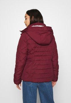 Hollister Co. - CORE - Veste d'hiver - burgundy