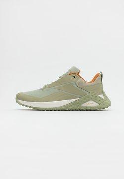 Reebok - TRAIL CRUISER - Zapatillas de trail running - mystery grey/chalk/ochre