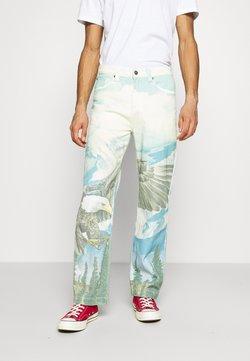 Jaded London - ALASKA LANDSCAPE SKATE - Jeans Relaxed Fit - multi-coloured