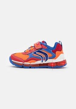 Geox - BOY - Sneaker low - red/royal