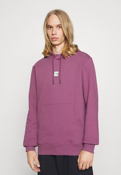 The North Face - CENTRAL LOGO HOOD - Sweat à capuche - pikes purple