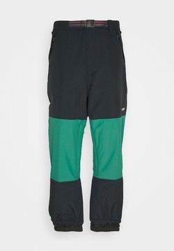 Quiksilver - BEATER - Pantaloni da neve - antique green
