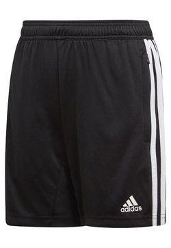 adidas Performance - TIRO - kurze Sporthose - black