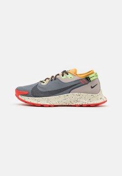 Nike Performance - PEGASUS TRAIL 2 GTX - Löparskor terräng - smoke grey/black/bucktan/college grey