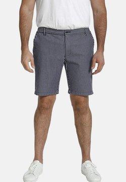 Charles Colby - BARON IKE - Shorts - blau gestreift