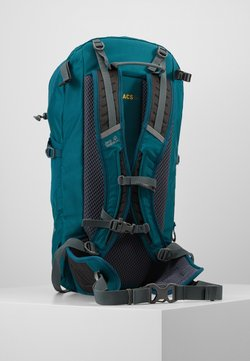 Jack Wolfskin - KINGSTON 30 PACK - Tourenrucksack - dark spruce