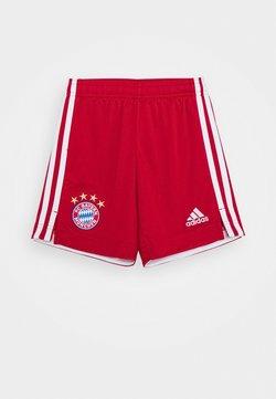 adidas Performance - FC BAYERN MUENCHEN SPORTS FOOTBALL - kurze Sporthose - red