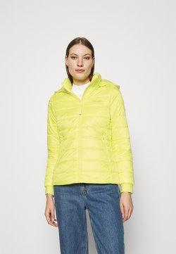 Calvin Klein - ESSENTIAL SORONA JACKET - Winterjacke - green