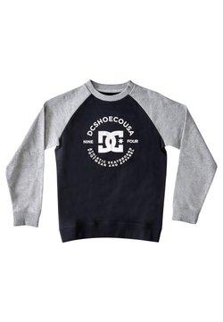 DC Shoes - STAR PILOT  - Sweater - black/grey heather