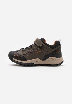 Geox - TERAM BOY ABX - Sneakers laag - military/dark orange