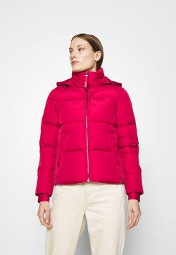 Calvin Klein - ELASTIC LOGO SORONA SHORT JACKET - Winterjacke - red