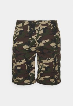 Dickies - MILLERVILLE - Shorts - mottled dark green