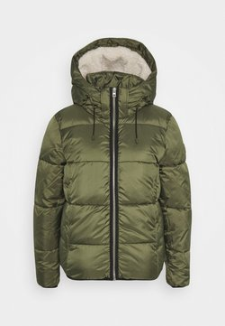 TOM TAILOR DENIM - Winterjacke - deep olive green