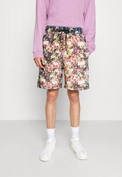 Vintage Supply - Shorts - multi-coloured