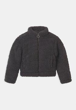 New Look 915 Generation - PUFFER BORG - Overgangsjakker - dark grey