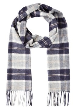 Johnstons of Elgin - CASHMERE SCARF - Scarf - silver