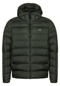 adidas Performance - Winterjacke - dark green