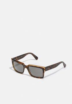 Ray-Ban - UNISEX - Sunglasses - havana/transparent brown