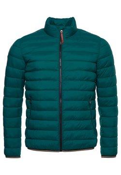 Superdry - MOUNTAIN PADDED JACKET - Winterjacke - fern green