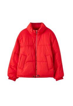 PULL&BEAR - Winterjacke - mottled red