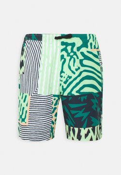 Burton - CREEKSIDE  - Shorts outdoor - composite